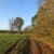 Wandern bei Mannersdorf
