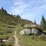 Wanderweg am Karriedel