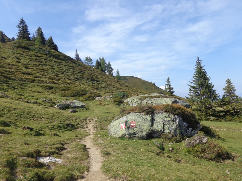 Wanderweg am Karriedel