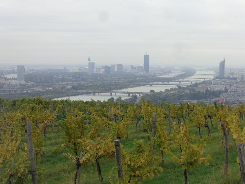 Wien und Wein