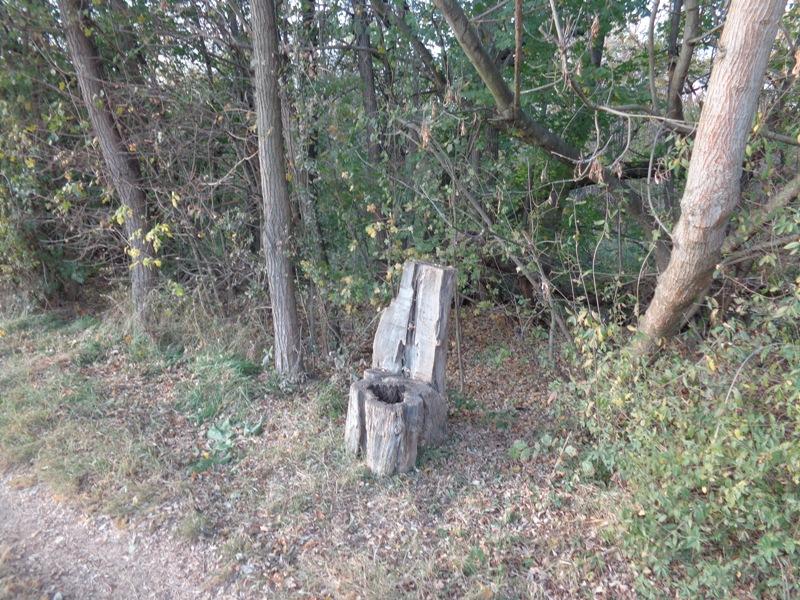 Baumstumpf Toilette