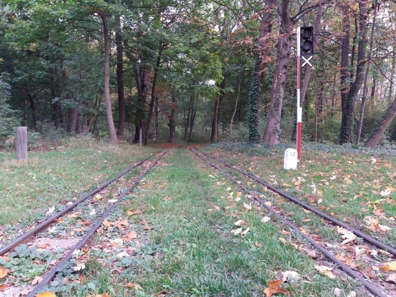 Gleise der Liliputbahn