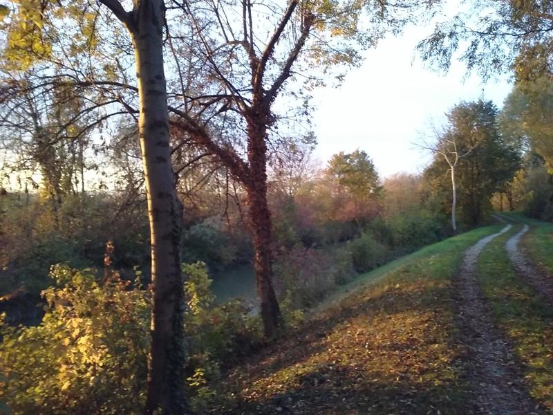 Herbstliche Abendsonne am Rußbach