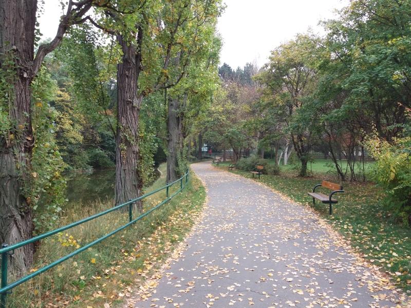 Spazierweg im Prater