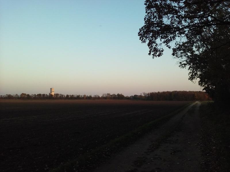 Am Feld neben dem Rußbach
