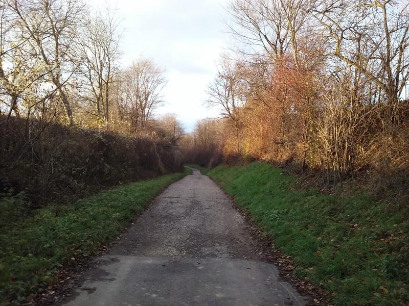 Kollnbrunnerweg
