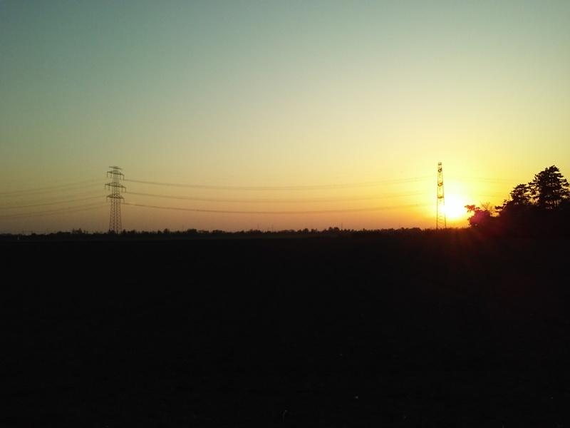Marchfelder Sonnenuntergang