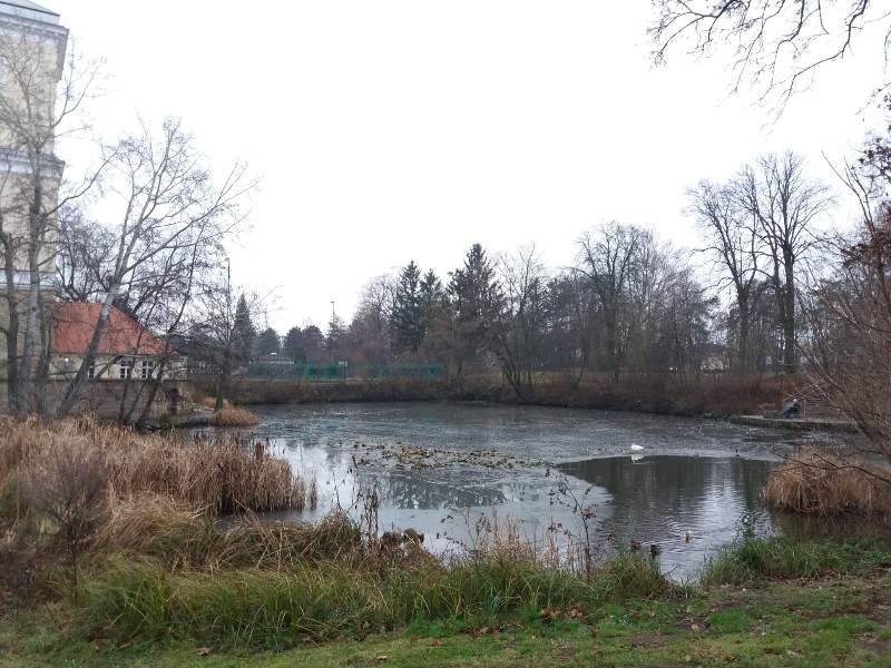 Schlossteich Wolkersdorf