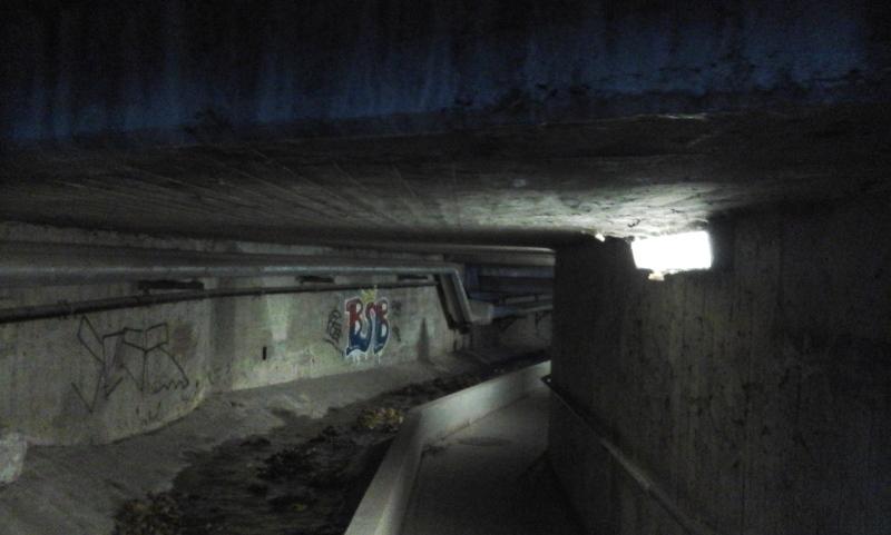 Unterführung Kahlenbergerdorf