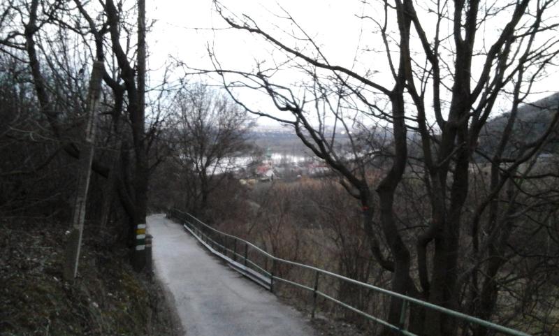 Waldbachsteig nach Kahlenbergerdorf