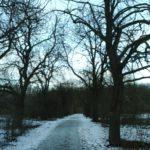 Vorwerkstraße im Winter