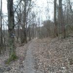 Winterzeit am Walderlebnispfad