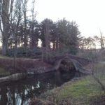 Brücke im Wasserpark