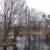 Teich im Schweizer Garten