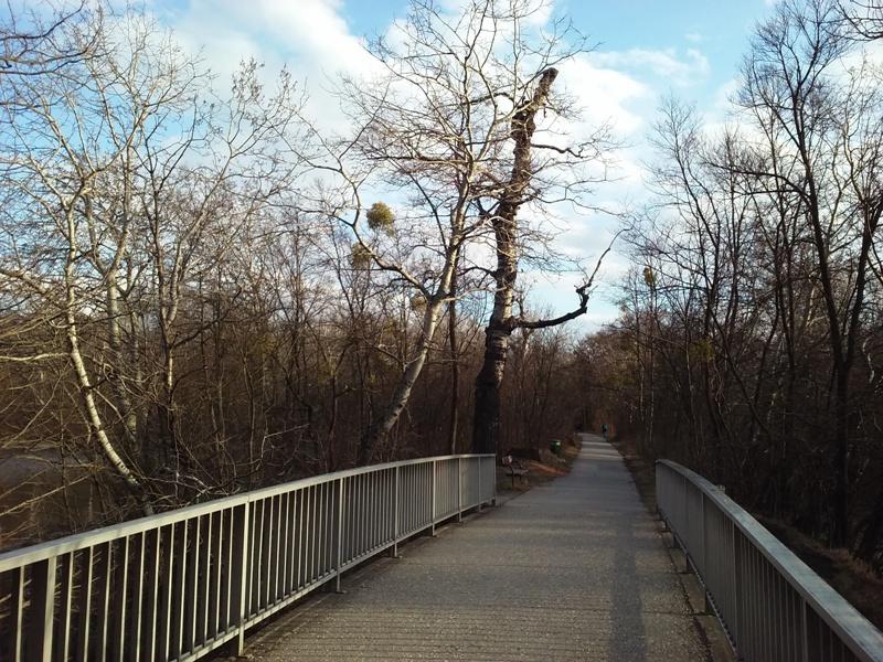 Brücke am Heustadlwasser