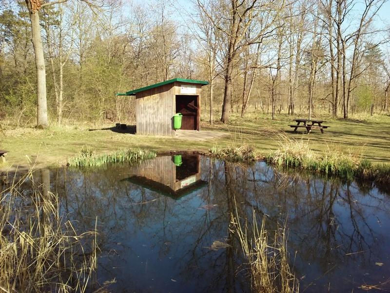 Waldbiotop Straßhof