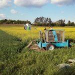 Feldbewässerung bei Parbasdorf