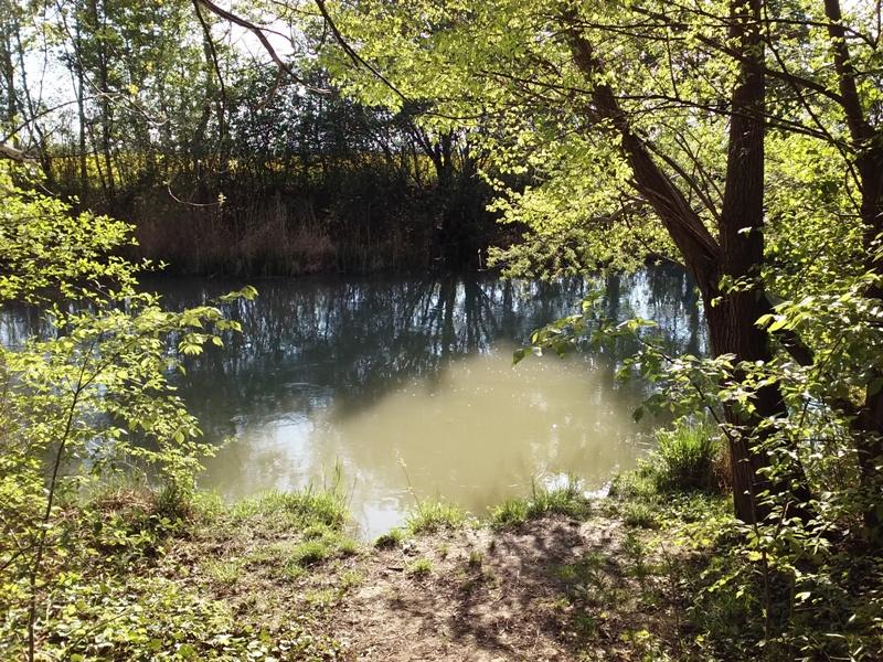 Fischerplatzl am Rußbach