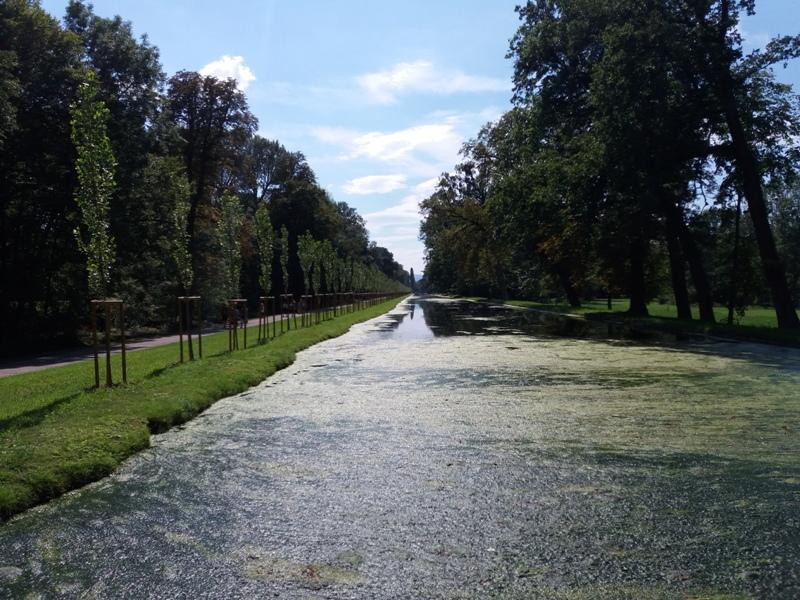 Forstmeister Kanal