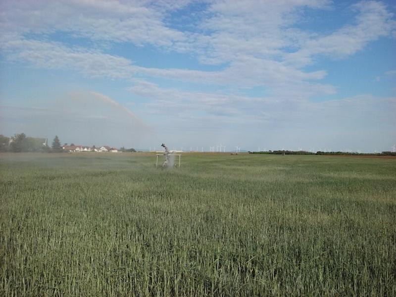 Sprinkler an der Feldgasse