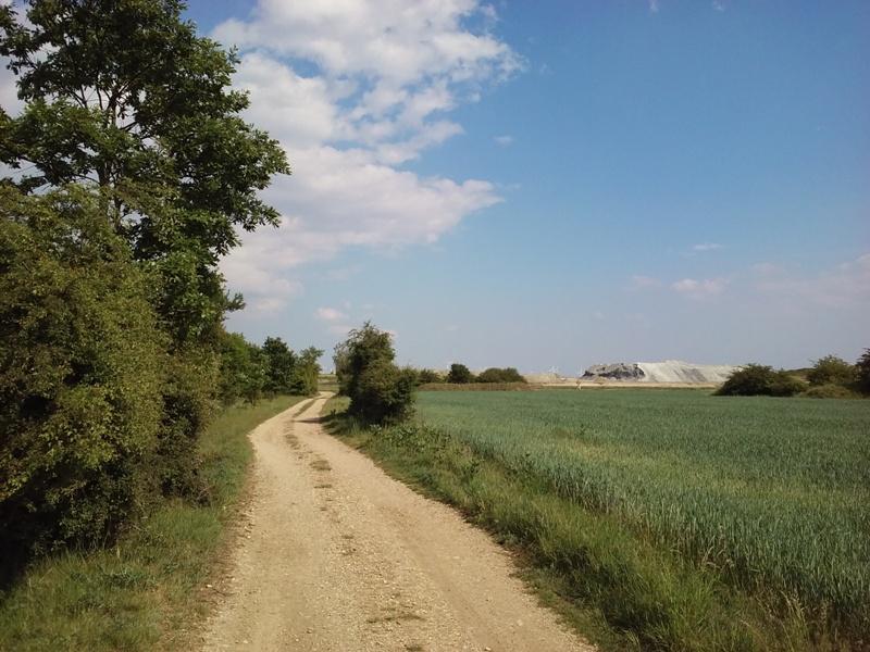 Weg in Richtung Marchfeldkogel