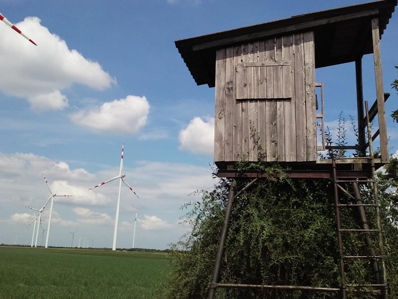 Hochsitz am Energiepark Obersiebenbrunn