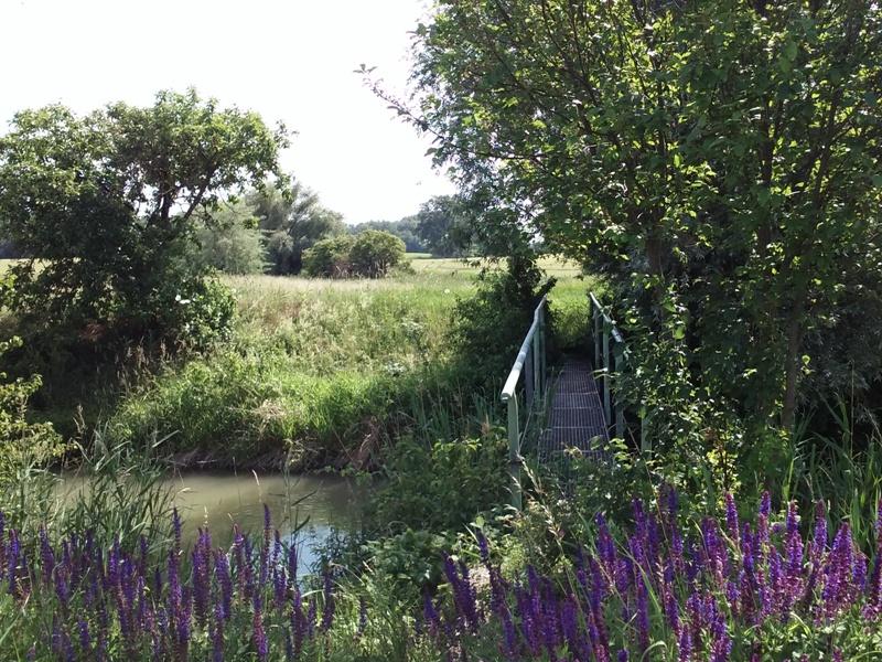 Steg am Kanal