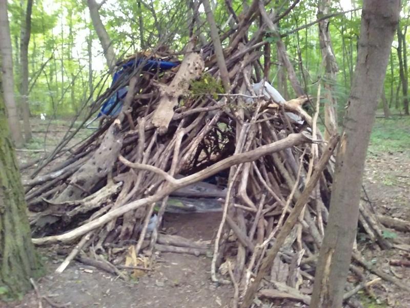 Waldhütte am Heustadlwasser