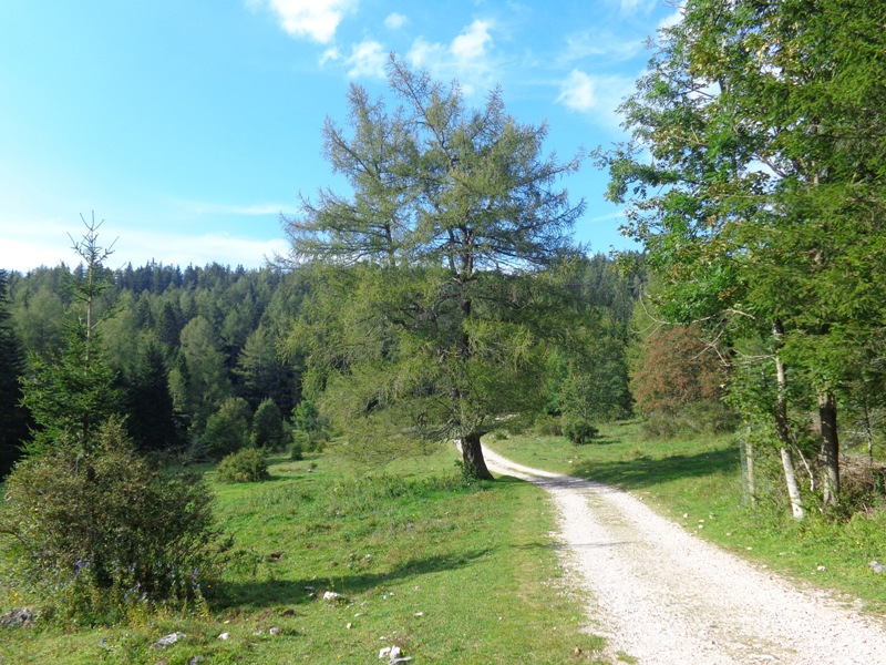 Wanderweg zur Teichalm