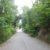 Hohlweg bei Bockfließ