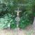 Mayrhofer Kreuz