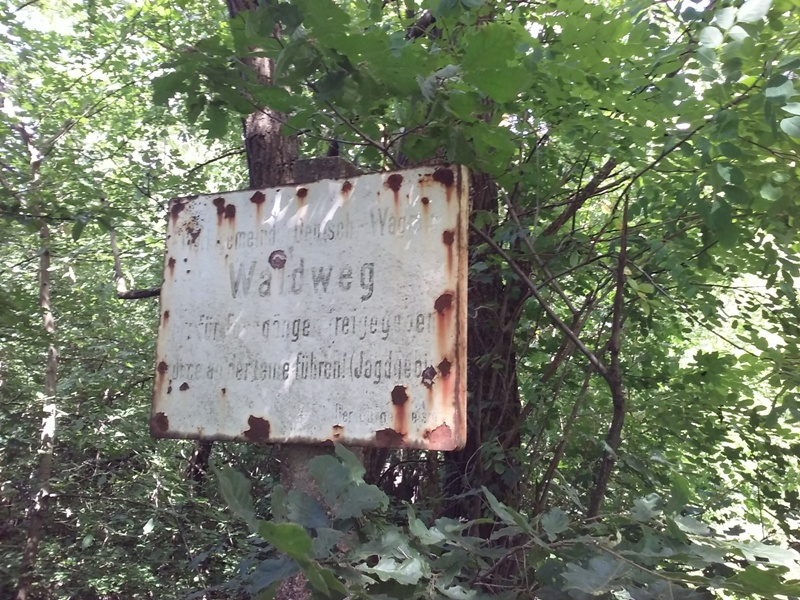 Rost am Waldweg