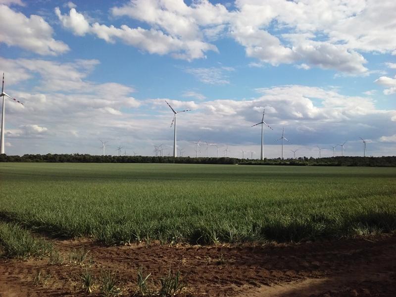 Windräder bei Siehdichfür