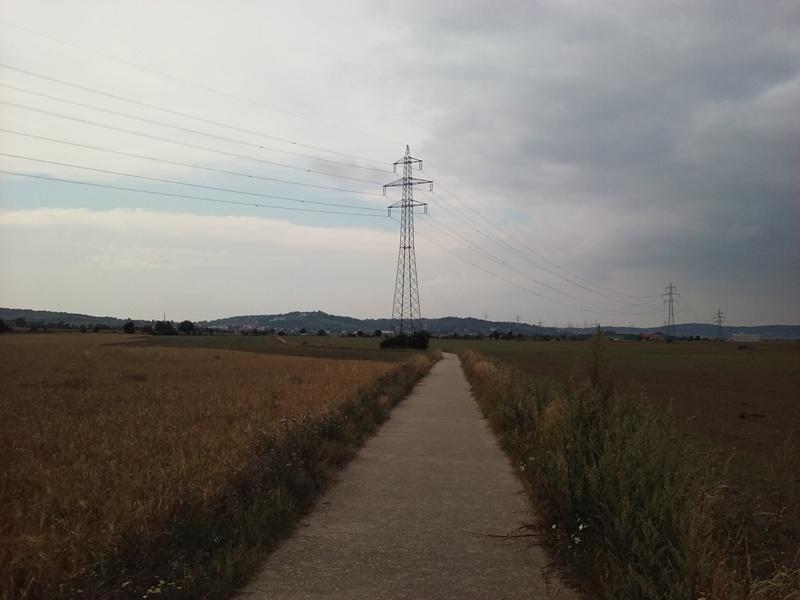 Radweg bei Föhrenhain