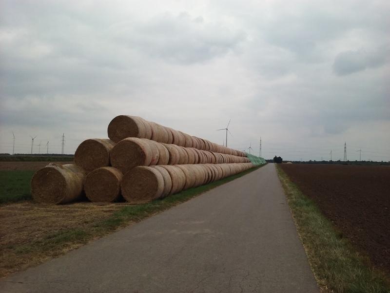 Strohballen bei Pillichsdorf