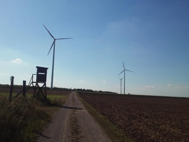 WEB Windpark Matzen Klein-Harras