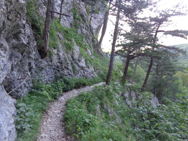 Wandersteig durch die Eng