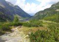 Wanderweg zum Grünsee