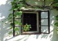 Weinviertler Bauernfenster