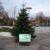 Weihnachtsbaum am neuen Marktplatz