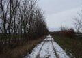 Verschneiter Weg am Golfplatz