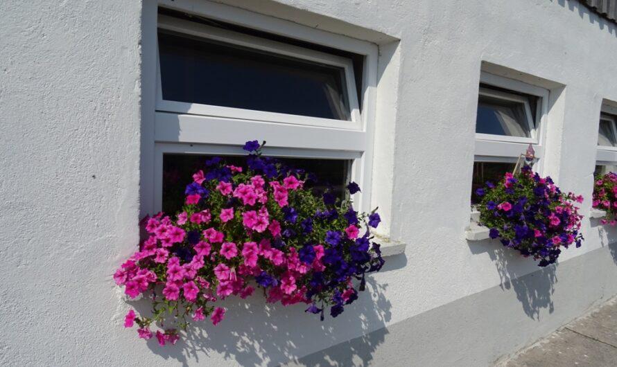 Blumen vor dem Stall