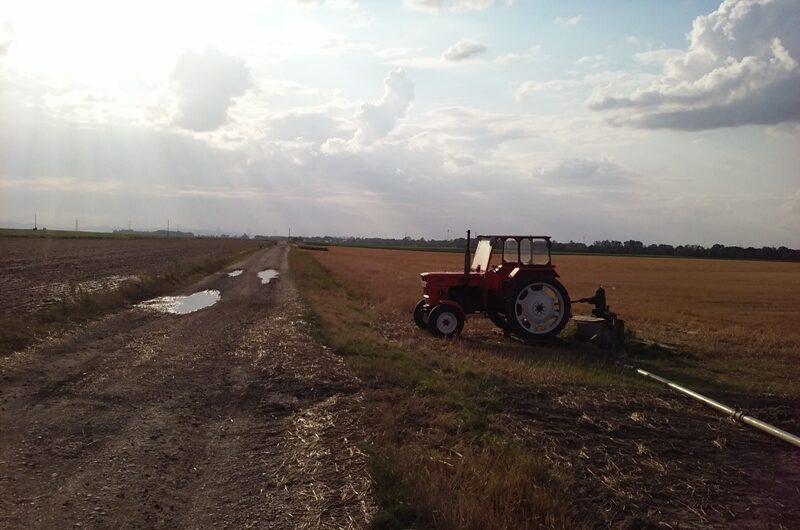 Traktor bei Parbasdorf