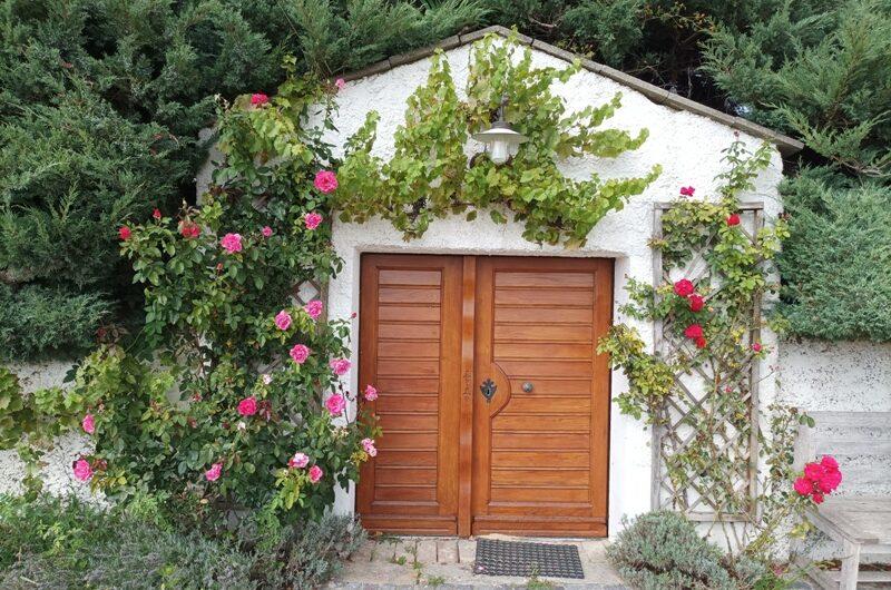 Rosen vor dem Weinkeller