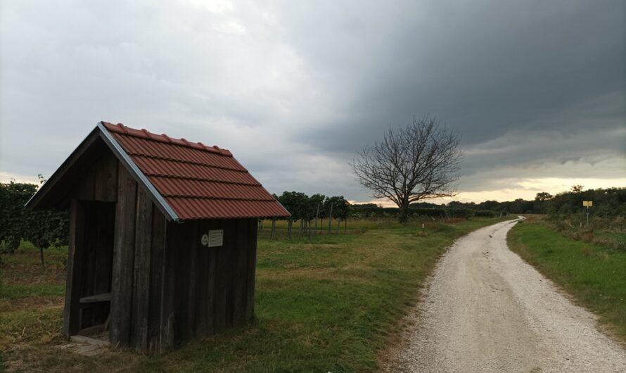 Weinberghütte bei Bockfließ